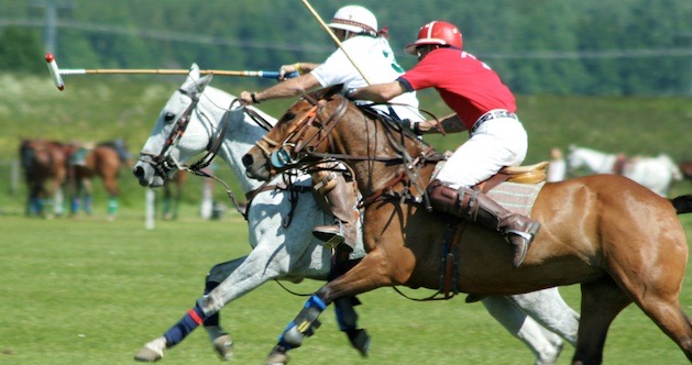 Training for Polo
